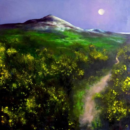 Moonlight over the Sugar Loaf - John O'Grady