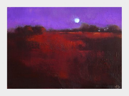A moonlit bogland with contrasting brown and violet colours