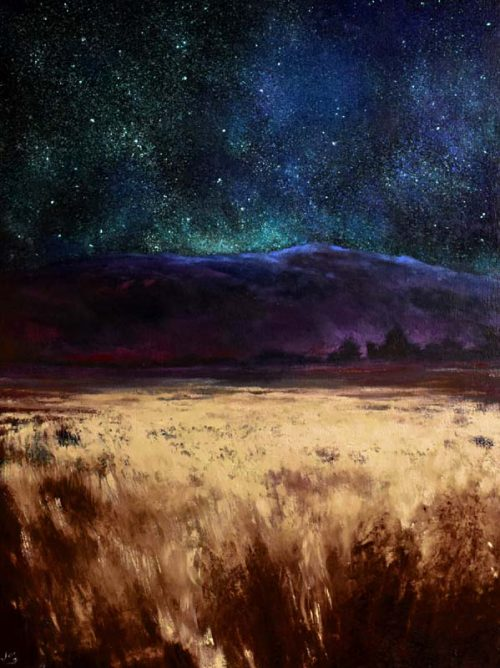 Starry Night on the bogland