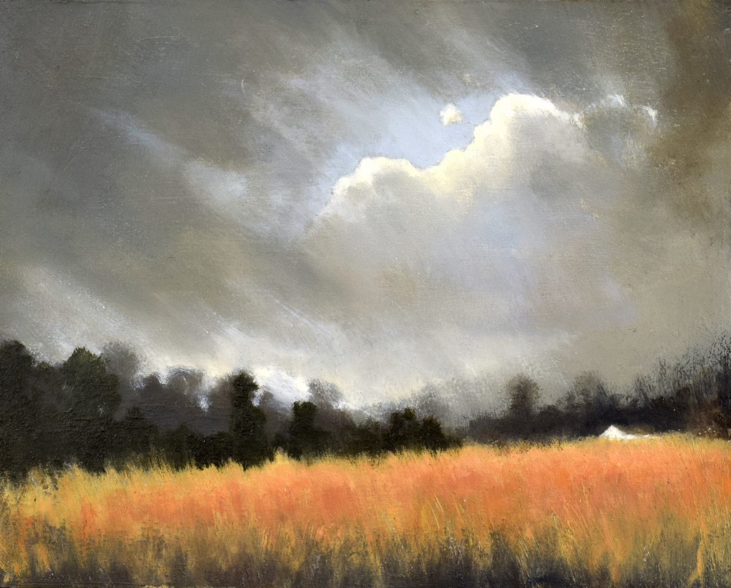 The Golden Field II, John O'Grady | An autumnal oil on canvas Irish landscape with a cloudy sky and a golden field
