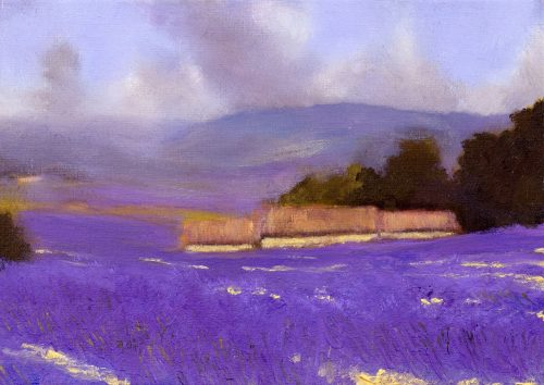 Evening in the Lavender fields, John O'Grady | A landscape painting with a dazzling lavender field in full bloom
