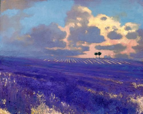 Falling Light in Ferrassières by John O' Grady | An oil painting of lavender fields at sunset in Provence