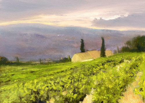 Vineyards at First Light, John O'Grady