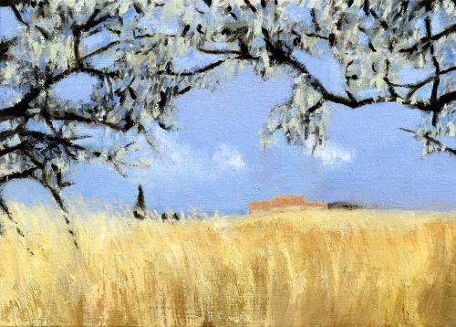 Wheatfield in the Afternoon Heat, John O'Grady | A landscape painting of a summer day in Provence