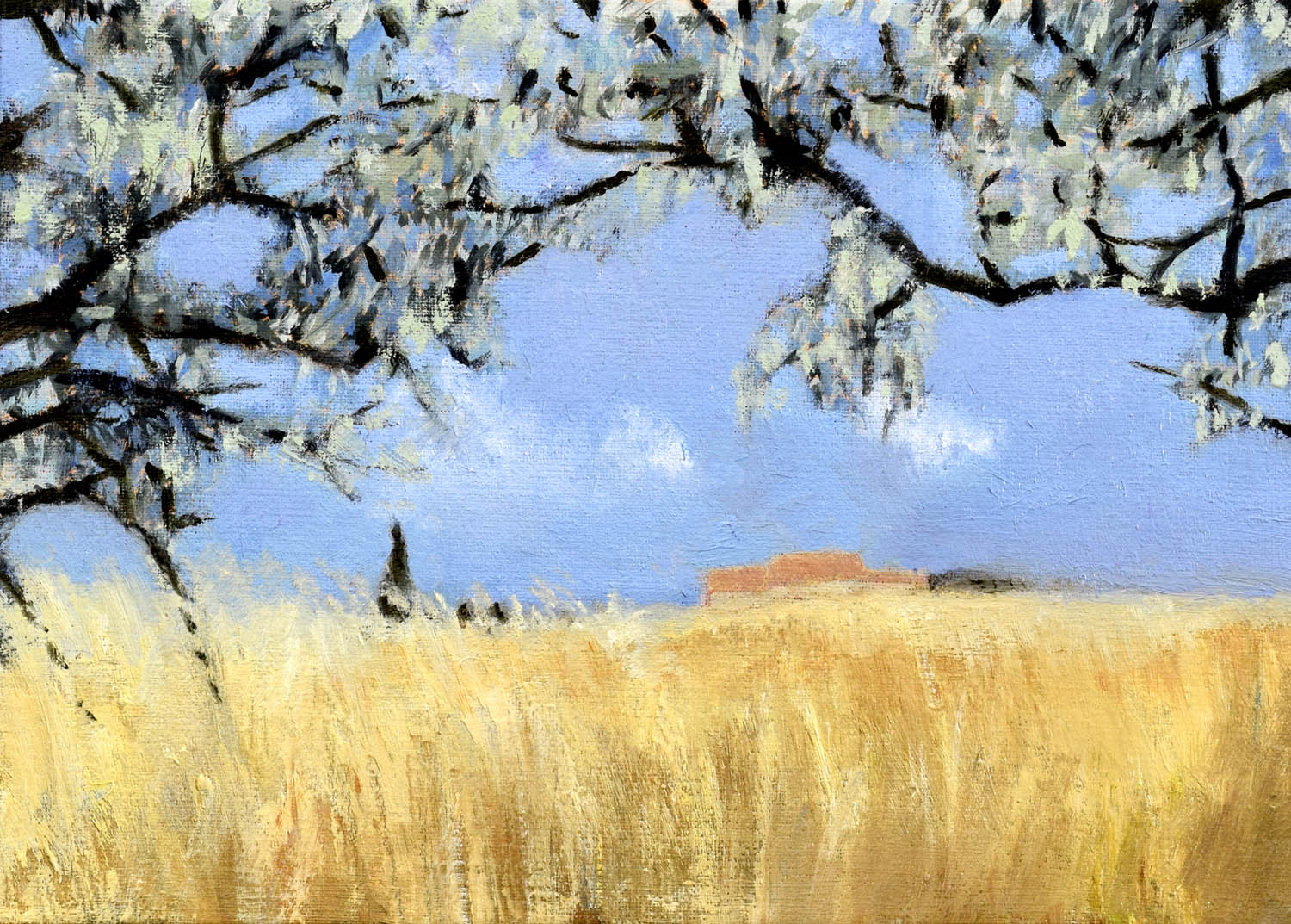 Wheatfield in the Summer Heat, John O'Grady | A landscape painting with gold wheat contrasting with the blue sky and the trees with silver leaves